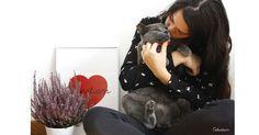 Buenos días! Puede haber mejor manera de empezar el día? #gatos #cat #catlover #felizviernes #pinterest
