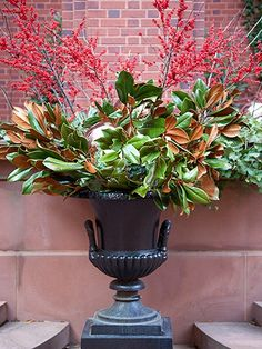 Color Outside the Lines: LOVE ... Christmas Magnolia Greens