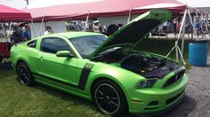 Hoffman Ford Harrisburg Pa ... Ford Mustang BOSS 302 in Gotta Have it Green on Pinterest | Boss, Ford