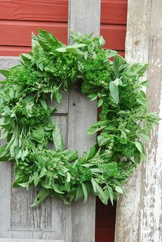 Drying a Basil Wreath with a touch of other herbs thrown in. <3