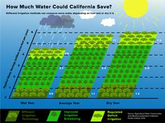 Growing almonds using less water. Of course, the biggest users of water are still meat, milk and eggs. Irrigation Methods, Engineering Notes, Agricultural Engineering, Infographic Examples, California Drought, Global Awareness, Milk And Eggs, Water Conservation, Water Supply