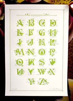 Each letter is unique, paired with a bird whose name begins with the letter (of course all lettered and illustrated by j.hische). Printed on Crane's Lettra 110lb in a green. The color varies slightly between prints as the ink was mixed on press). 16x24in.