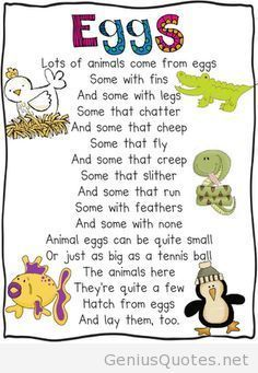 Oviparous Animals Poem - Great lesson idea on this website that includes a mentor text, writing prompt, and craftivity. Love the science journal idea! Kindergarten Poems, Preschool Songs, Preschool Science, Teaching Science, Science Activities, Preschool Ideas, Farm Animals Preschool, Kindergarten Units, Preschool Class
