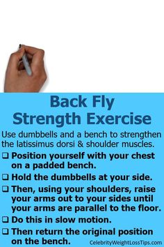 Back Fly Strength Exercise: Use dumbbells and a bench to strengthen the latissimus dorsi and shoulder muscles. #exercise #BackFly Latissimus Dorsi, Shoulder Muscles, Back Exercises, Strength Workout, Weight Loss Inspiration, Weight Loss Tips, Fitness Motivation, Bench, Positivity