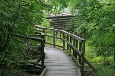 Google Image Result for http://us.123rf.com/400wm/400/400/gary718/gary7180707/gary718070700117/1350863-a-walking-trail-in-the-great-swamp-national-wildlife-refuge-new-jersey.jpg