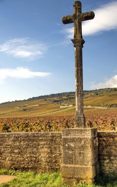 Romanee Conti france - Bing Images