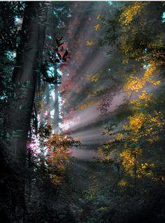 Breakthrough of Light