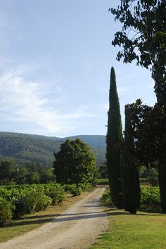 ~Pack Your Bags: La Bastide de Marie awaits!, LaCoste, France~