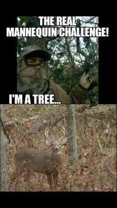 You won't get it if you haven't lived it! Funny Hunting Pics, Deer Hunting Humor, Funny Fishing Memes, Funny Deer, Hunting Quotes, Turkey Hunting, Fishing Humor, Hunting Stuff, Girls Who Hunt