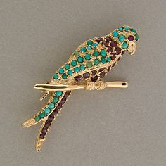 Lovely turquoise / garnet Parrot pin!
