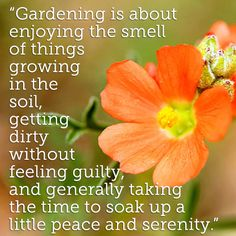 Gardening is about...