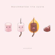 Mashmallow life cycle by Sheharzad-Arshad.deviantart.com on @deviantART