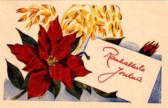 CARITA (FALIN) RODEN - 106951943635258866150 - Picasa-verkkoalbumit Heaven, Faces, Picasa, Sky, Heavens, Paradise
