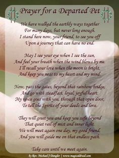 Prayer for a departed pet