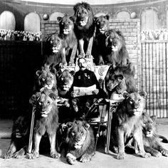 Frank C Bostock and his trained circus lions circa 1900 Angel In French, Big Cat Rescue, Elephant Sanctuary, Some Beautiful Pictures, Like A Lion, Man Sitting, Big Top, Vintage Circus, Photo Black