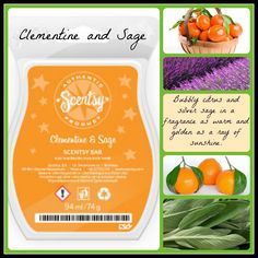 Clementine and Sage Scentsy Fragrance Bar £5.00  Bubbly citrus and silver sage in a fragrance as warm and golden as a ray of sunshine.
