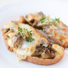 Oyster Mushrooms are known to lower the cholesterol level and protect against cancer. Amazing with melted mozzarella cheese and fresh thyme!