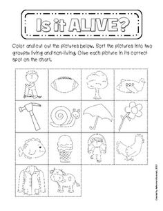 Living and Non-Living Sorting Activity - Adrienne Mosiondz - TeachersPayTeachers.com FREE