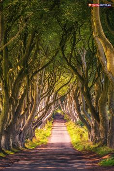 An Epic 3 Week Interrailing Route for Europe: 8 cities in 21 days - The ultimate Game of Thrones Northern Ireland guide! A self-guided itinerary to discover all of Nor - Ireland Beach, Ireland Vacation, Ireland Travel, Dublin Travel, Visit Northern Ireland, Belfast Northern Ireland, Dublin Ireland, Ireland Map, Ireland Food