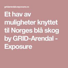 Et hav av muligheter knyttet til Norges blå skog by GRID-Arendal - Exposure Grid
