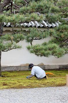 Oravanpesä: JAPANI 2016 osa 11. Kioto 2/4.