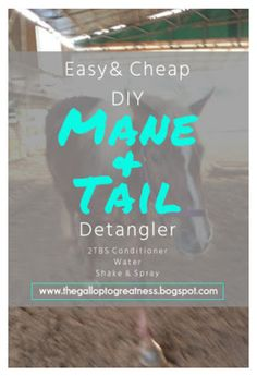 """""""Easy & Cheap DIY Mane & Tail Detangler"""" by thegalloptogreatness ❤ liked on Polyvore"""