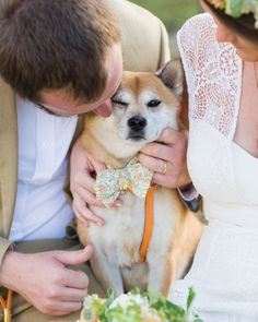 9 Dapper Dogs Wearing Bow Ties at Weddings #NationalBowTieDay