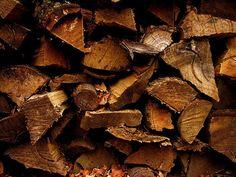 staygoldbearcat:    firewood
