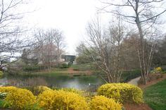 Grounds of the Carter Center