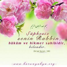 http://www.harunyahya.org/bilgi/gununsozu