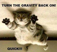 Help me need gravity