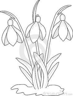 Snowdrops drawing