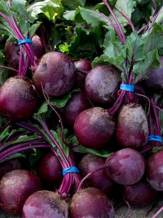 bundles of beets Fruit And Veg, Fruits And Veggies, Mimi Kirk, How To Cook Everything, Fresh Beets, Food Technology, Fall Vegetables, Delicious Fruit, Tasty