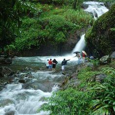 Waterfall in blue ginger wayanad Kerala