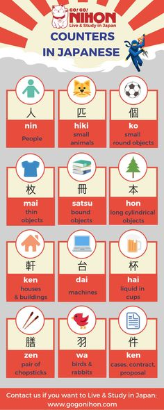 We are a FREE service that specializes in helping students live and study in Japan. Free Japanese Lessons, Learn Japanese Beginner, Learn Japanese Words, Study Japanese, Japanese Kanji, Japanese Culture, Learning Japanese, Learning Italian, Japanese Language School