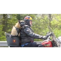 Beast Riders Dog Motorcycle Carrier