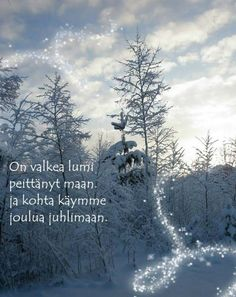 Christmas, Outdoor, Xmas, Outdoors, Navidad, Noel, Outdoor Games, The Great Outdoors, Natal