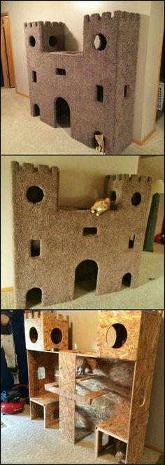 Burg. Selber Bauen. Für Katzen