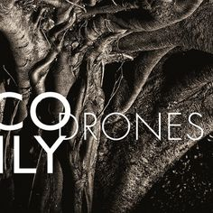 "nico muhly - ""drones"" : drone, contemporary classical"