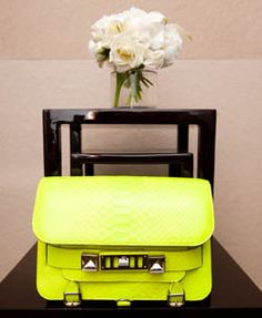 Just a little neon Proenza, that's all. http://thecoveteur.com/Shirley_Cook#