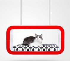 Suite Pet Lounge by Forma Italia