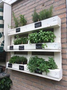 Pallet Garden Benches, Plant Table, My House, Garden Design, Feels, Outdoors, Gardening, Patio, Nice