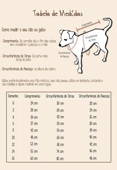 Legal pra Cachorro: Tabela de Medidas