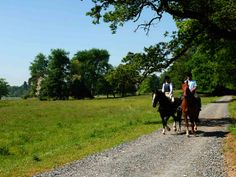 Examples of our guest riding fees include: One Hour Hack: Adult €35 Child €25 Two Hour Cross Country Jump Ride: Adult €75 Child €65 One Hour Group Lesson: Adult €30 Child €20 Half Hour Private Lesson: Adult €45 Child €35 Saddle Club (age 5 -15) €25 for 2 hours We are delighted to offer reduced fees to any guest riding their own horse.