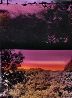 "Landscape Photography: New Visions, Part 4: Bryan Graf, ""Pond 2,"" 2011."
