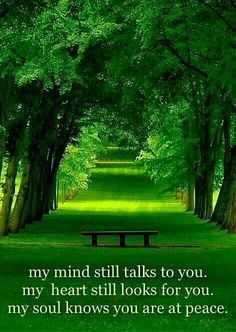 My mind still talks to you. My heart still looks for you. My soul knows you are at peace.