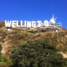 Windy Wellington sign, New Zealand