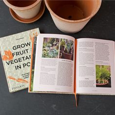 If you're an urban or small space gardener, or someone who regularly overfills your backyard vegetable patch, Aaron Bertelsen's new book is for you. The 240-page hardcover is packed with expert advice on growing edibles in pots such as patio containers and window boxes. Bertelsen, the vegetable gardener and cook at England's Great Dixter garden, writes in a welcoming, conversational tone, and he covers the types of pots to use, which plants to grow, and how best to take care of them. Growing Vegetables, Fruits And Vegetables, Baked Trout, Tomato Vegetable, Lentil Soup, Window Boxes, Small Space, New Books, Pots