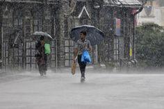 People hold umbrellas as they walk in a heavy rain shower in Shimla.