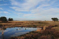 Nationaal Park Hoge Veluwe, Hoenderlo